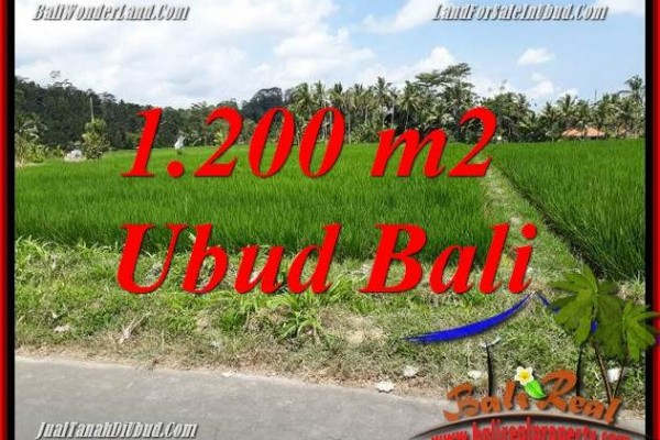 Exotic Property 1,200 m2 Land for sale in Ubud Tampak Siring Bali TJUB694