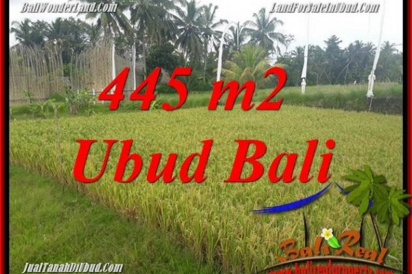 Exotic Property Land in Ubud Bali for sale TJUB695
