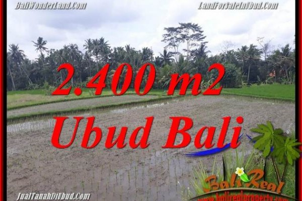 Affordable 2,400 m2 Land for sale in Ubud Bali TJUB697