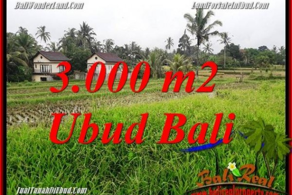 Exotic Property Land for sale in Ubud Bali TJUB698