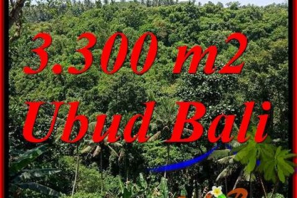 Beautiful 3,300 m2 Land sale in Sentral Ubud TJUB692