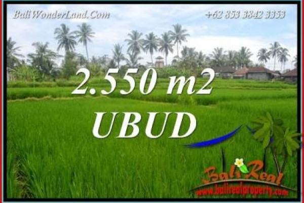 Affordable Property 2,550 m2 Land for sale in Ubud Pejeng TJUB700