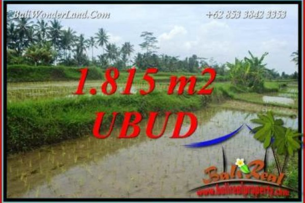 FOR sale Beautiful 1,815 m2 Land in Ubud Bali TJUB703