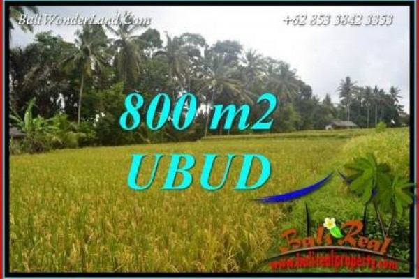 Magnificent Property Land for sale in Ubud Bali TJUB707