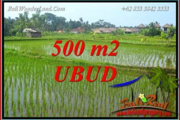 FOR sale Beautiful Property 500 m2 Land in Sentral Ubud TJUB708