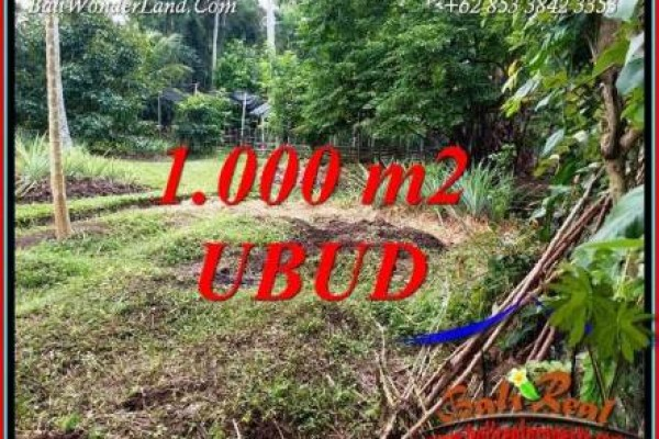 FOR sale Magnificent Property 1,000 m2 Land in Sentral Ubud TJUB712