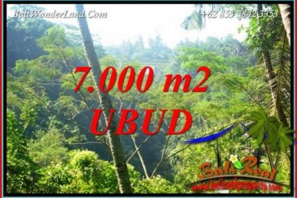 Exotic Property 7,000 m2 Land sale in Ubud Tegalalang TJUB714