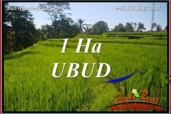 Beautiful Property Ubud Tegalalang Bali 10,000 m2 Land for sale TJUB715