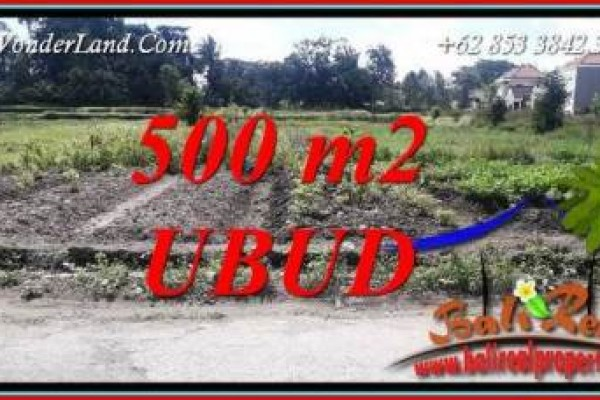 Magnificent Property 500 m2 Land for sale in Sentral Ubud Bali TJUB720