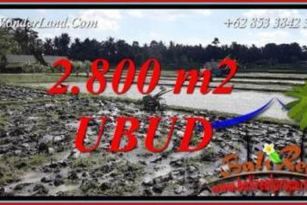 Exotic Property Ubud Land for sale TJUB722