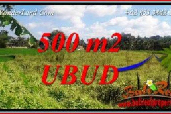 FOR sale Affordable Property Land in Ubud TJUB724