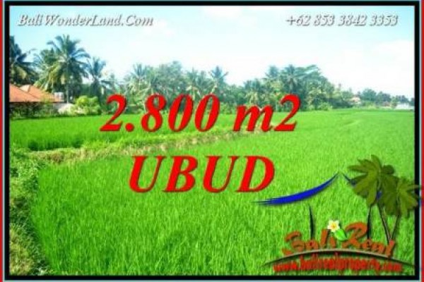 Affordable 2,800 m2 Land for sale in Sentral Ubud TJUB726