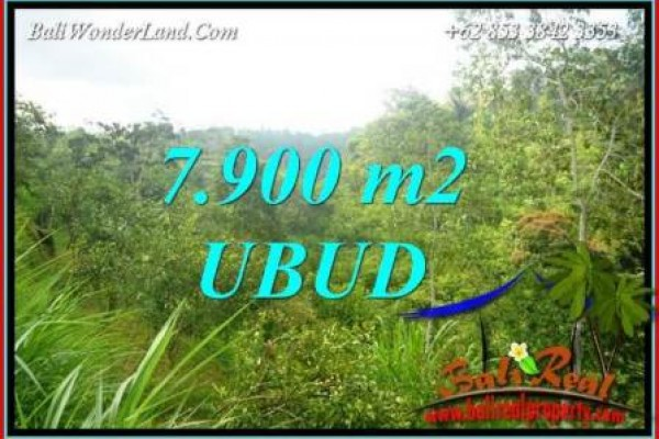 Magnificent Ubud Tegalalang 7,900 m2 Land for sale TJUB729