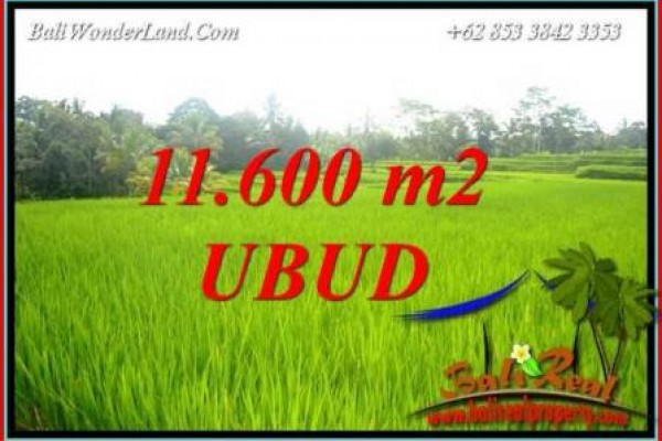 FOR sale Magnificent 11,600 m2 Land in Ubud Bali TJUB732