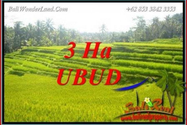 Exotic Property 30,000 m2 Land for sale in Ubud Tegalalang Bali TJUB733