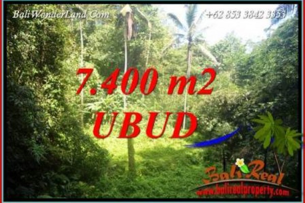Beautiful Land in Ubud for sale TJUB734