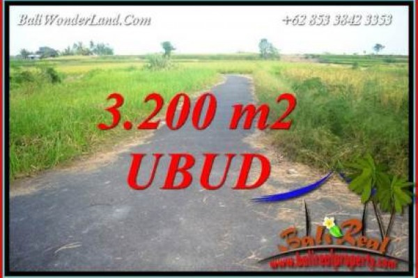 Beautiful Property Land for sale in Ubud Bali TJUB736