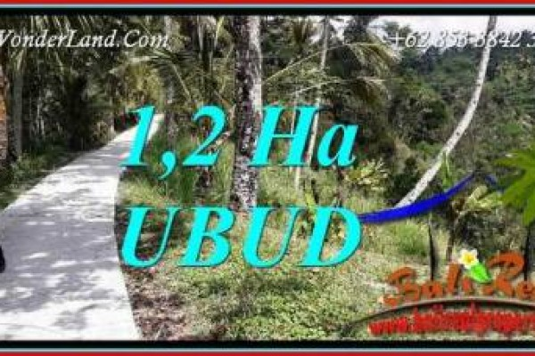 Affordable Land in Ubud for sale TJUB740