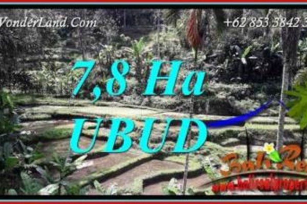 Exotic Property Ubud Payangan 78,000 m2 Land for sale TJUB741