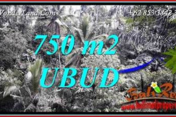 Magnificent Property Land in Ubud Bali for sale TJUB742