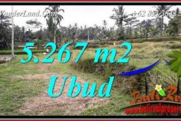 FOR sale Beautiful Property 5,267 m2 Land in Ubud Tegalalang TJUB743