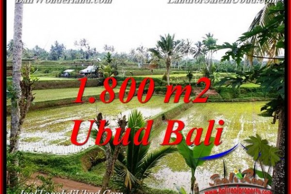 Magnificent 1,800 m2 LAND SALE IN UBUD BALI TJUB769