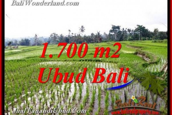 Affordable PROPERTY 1,700 m2 LAND IN TEGALALANG UBUD FOR SALE TJUB770