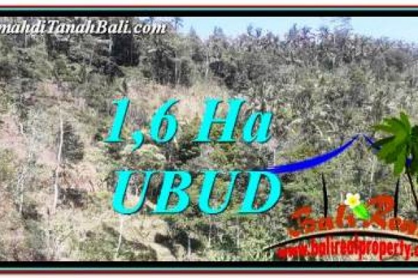 16,000 m2 LAND IN UBUD BALI FOR SALE TJUB748