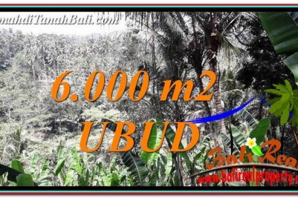Magnificent PROPERTY LAND IN UBUD BALI FOR SALE TJUB750