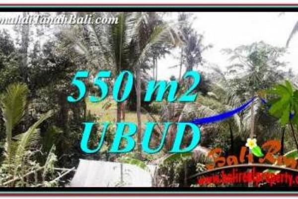 Beautiful PROPERTY LAND SALE IN UBUD BALI TJUB751