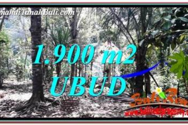 Magnificent LAND FOR SALE IN UBUD TJUB755