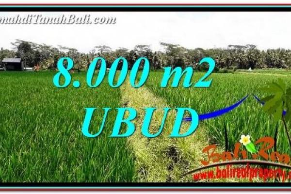 FOR SALE Affordable LAND IN Ubud Pejeng BALI TJUB763