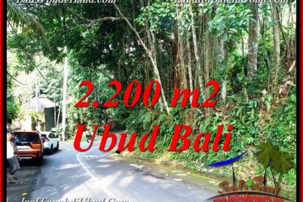 FOR SALE 2,200 m2 LAND IN UBUD BALI TJUB768
