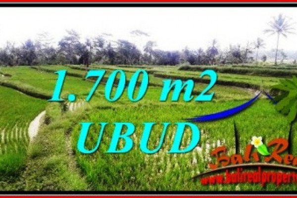 Beautiful PROPERTY Ubud Tegalalang 1,700 m2 LAND FOR SALE TJUB745