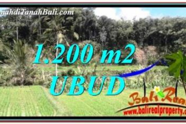 Exotic UBUD BALI 1,200 m2 LAND FOR SALE TJUB746