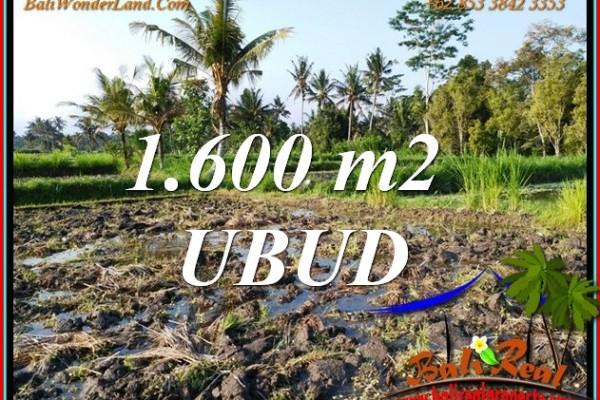 Exotic PROPERTY 1,600 m2 LAND SALE in Tampaksiring BALI TJUB807