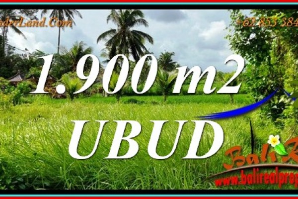 Magnificent PROPERTY 1,900 m2 LAND for SALE in UBUD TJUB811