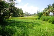 Land for sale in Ubud amazing rice field and forest view – LUB139