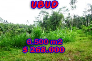 Extraordinary Property in Bali, Land for sale in Ubud Bali – 6.500 m2 @ $ 41
