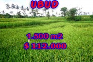Extraordinary Property in Bali, Land for sale in Ubud Bali – 1.500 m2 @ $ 74