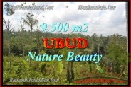 Land for sale in Bali, Outstanding property in Ubud Bali – 9.500 m2 @ $ 125