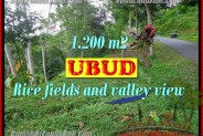 Land for sale in Bali, Spectacular view in Ubud Bali – 1.200 m2 @ $ 165