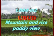 Land for sale in Bali, Outstanding view in Ubud Bali – 1.000 m2 @ $ 200