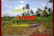 Affordable PROPERTY LAND FOR SALE IN Ubud Tegalalang TJUB451
