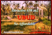 Affordable LAND IN UBUD BALI FOR SALE TJUB455