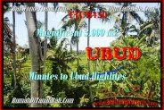 Magnificent 3.000 m2 LAND SALE IN UBUD TJUB450
