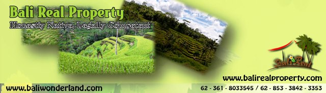 Land for sale in Ubud Bali.