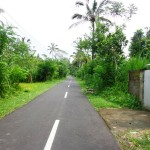 Land for sale in Ubud Bali - LUB160
