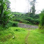 Land for sale in Ubud Bali - LUB163