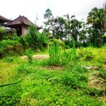 Land for sale in Ubud Bali - LUB166